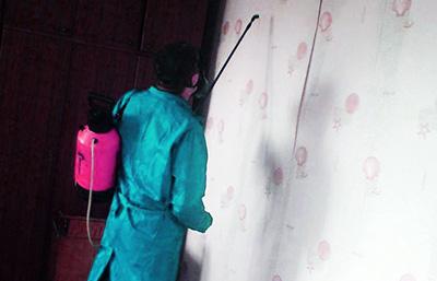 обработка от клопов в домашних условиях в казани